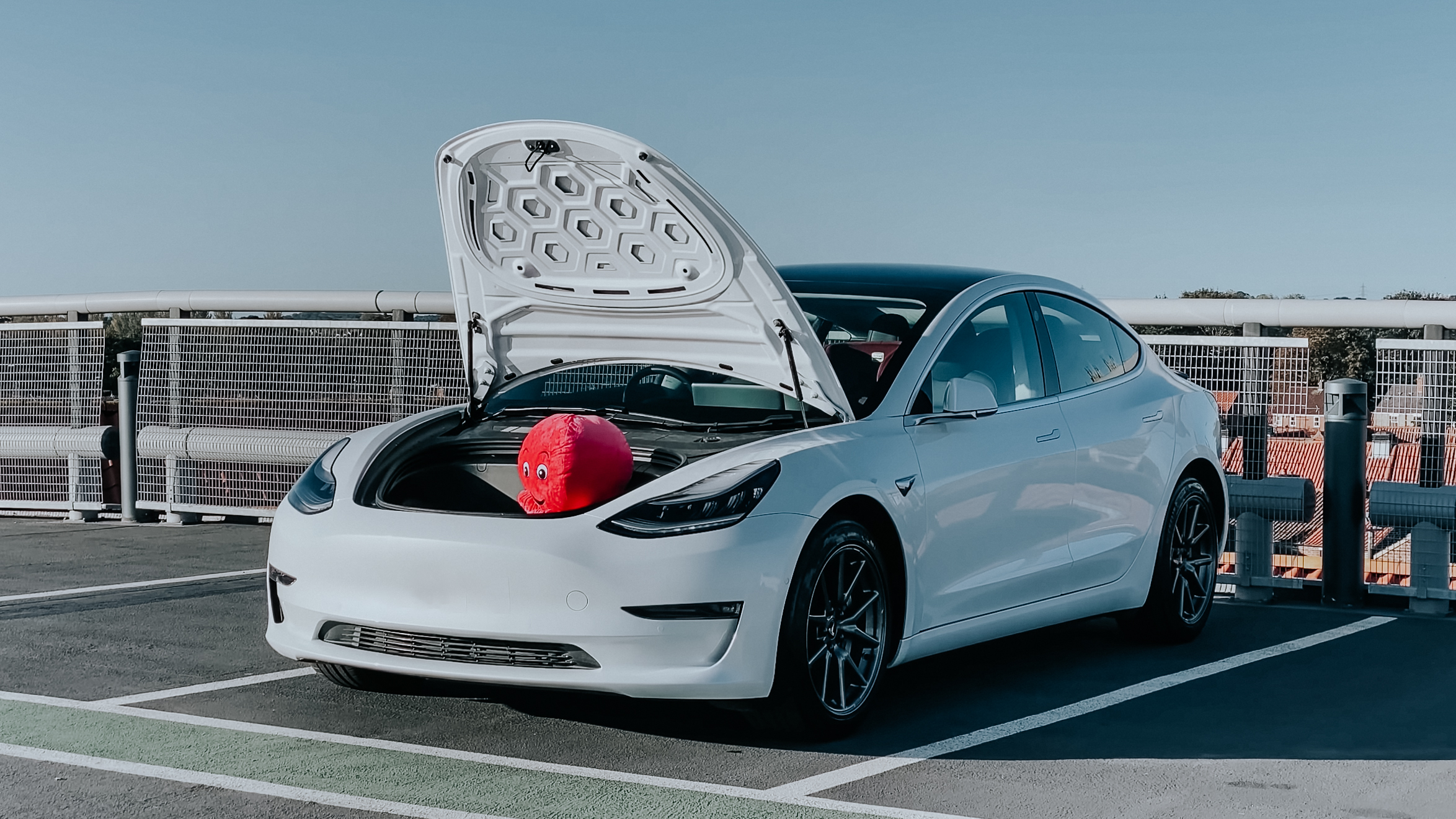 Charging Tesla for Free Octopus GO Referral
